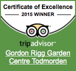 Trip Advisor Award Badge