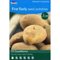 First Early Seed Potatoes 10 Casablanca