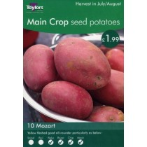 Main Crop Seed Potatoes 10 Mozart
