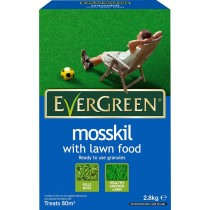 Evergreen Moss Kill With Lawn Food