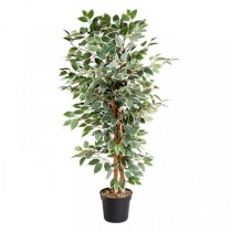 130cm Artificial Weeping Fig