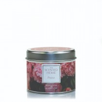 Peanoy The Scented Hone Tin Candle