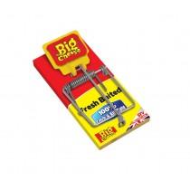 Fresh Baited Mouse Trap - STV The Big Cheese