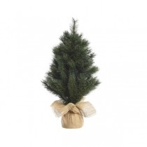 45cm Frosted Norway Mini Tree