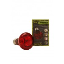 Komodo Products Infrared Bulb Screw Fitting 50w