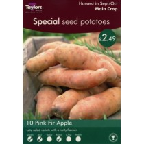 Special Seed Potatoes - 10 Pink Fir Apple