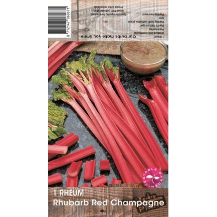 1 Rhubarb Red Champagne
