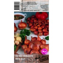 25 Red Shallots Red Sun