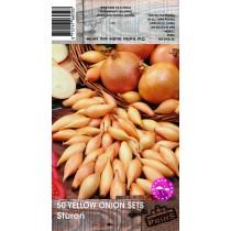 50 Yellow Onion Sets Sturon