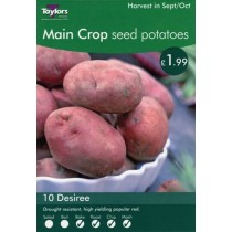 Main Crop Seed Potatoes 10 Desiree