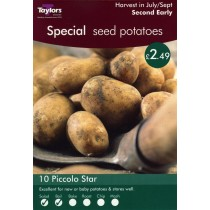 Special Seed Potatoes - 10 Piccolo Star