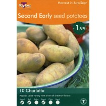 Second Early Seed Potatoes 10 Charlotte