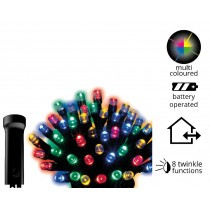 24 LED Battery Operated Multi Coloured Twinkle Lights