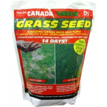 "Canada ""Green"" Grass Seed - 500g"