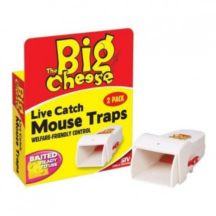 Live Catch Mouse Trap - Twin Pack - STV - The Big Cheese