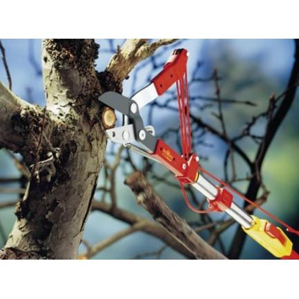 Wolf Multi-Change Anvil Tree Lopper